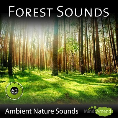 Forest-Sounds