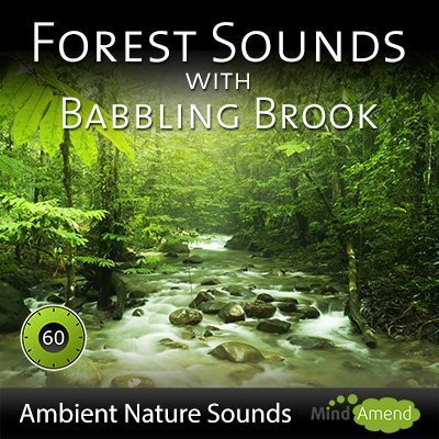 Forest-Sounds-With-Babbling-Brook
