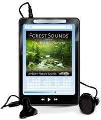 forest-sounds-babbling-brook-mp3