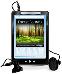 forest-sounds-mp3