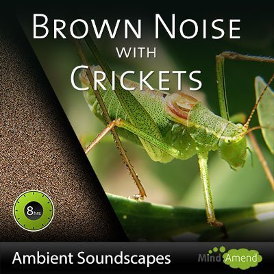 8 Hours of Brown Noise with Crickets