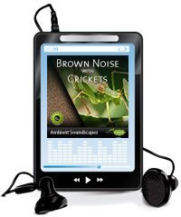 8 Hours of brown noise and crickets on mp3