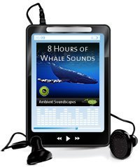 8 hours of whale sounds on MP3
